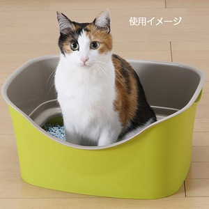 猫トイレ1