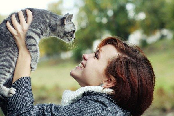 抱っこされる灰色の猫
