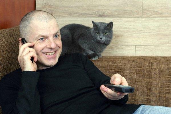電話で話す男性と灰色の猫