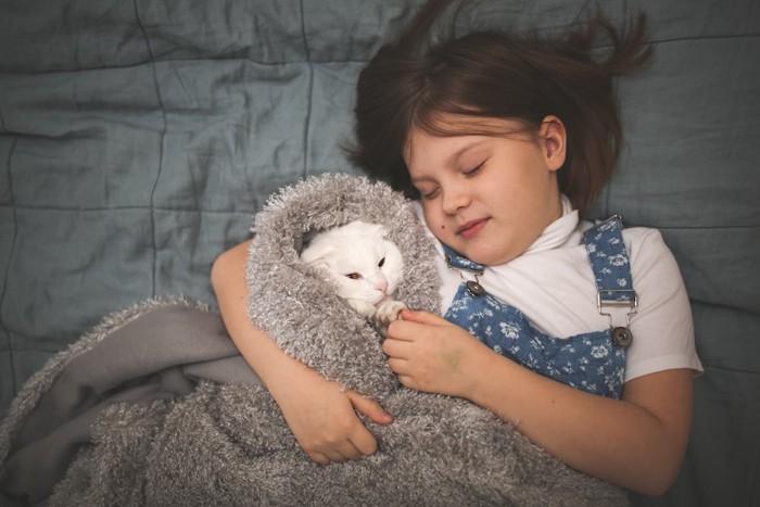 ベッドで一緒に眠る猫と女の子