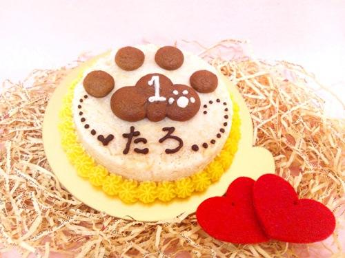 猫用ケーキ1