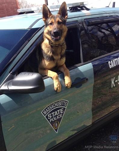 ボストン州警察K=9