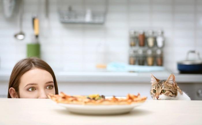 同じ視線でテーブルの上のご飯を狙う人と猫