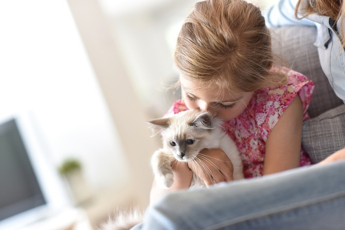 猫を抱きしめる少女