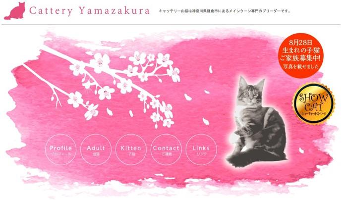 キャッテリー山桜