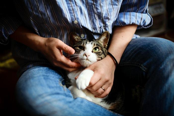 猫を抱えた男性