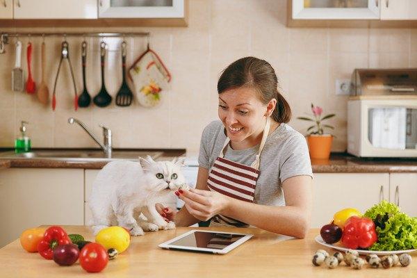 猫とキッチンにいる女性