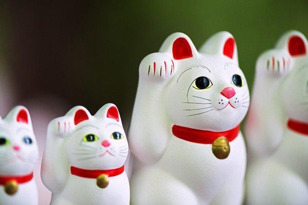 並べられた4匹の招き猫