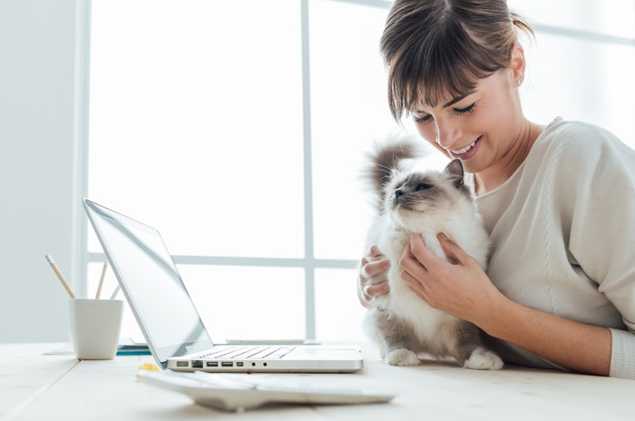 パソコンをみる猫と女性の写真