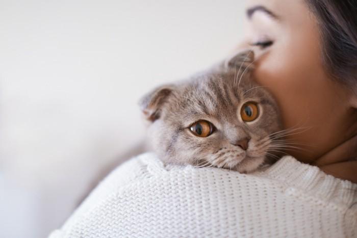 飼い主に抱っこされている猫