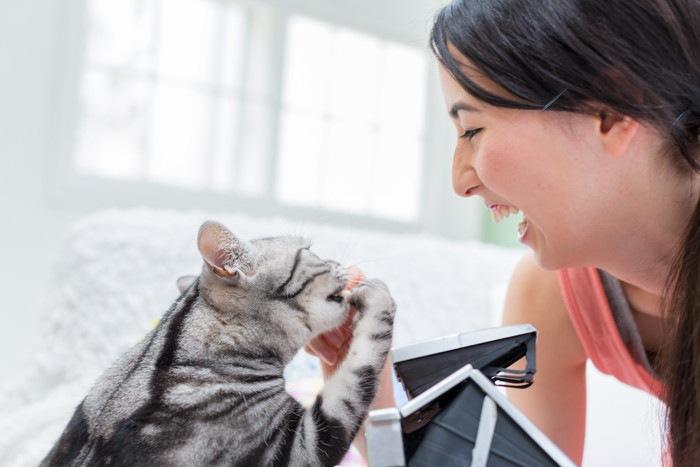 猫と向き合って笑う女性