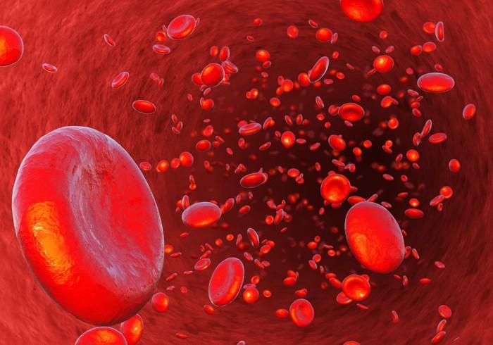 血管をイメージした写真