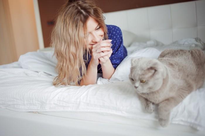 起こしに来る猫