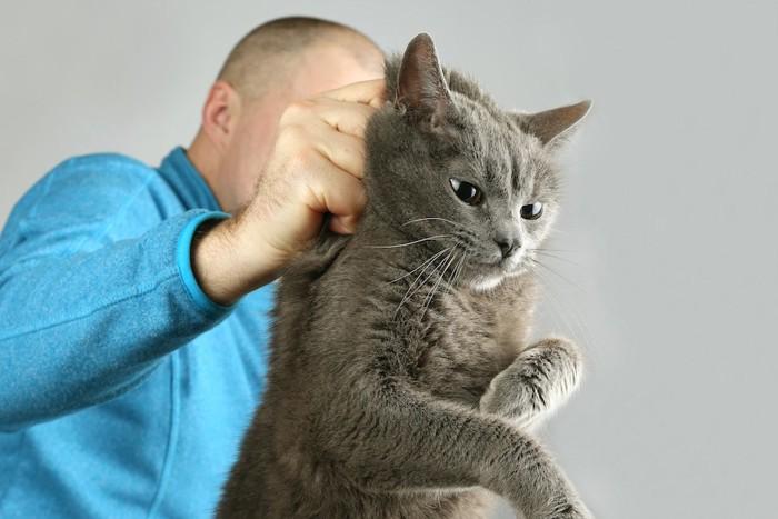 無理やり猫の首根っこを掴む男性