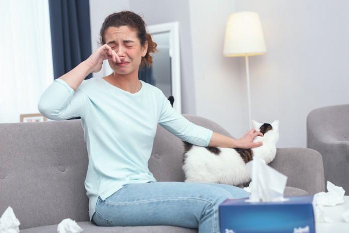 猫を撫でながら鼻をかむアレルギーの女性