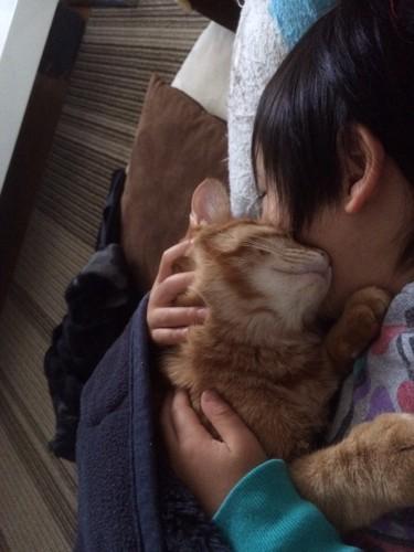 胸の上で眠る子猫