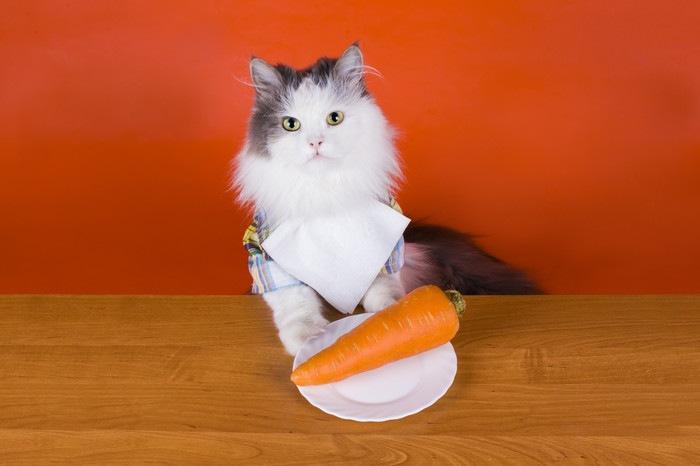 猫とお皿にのった人参