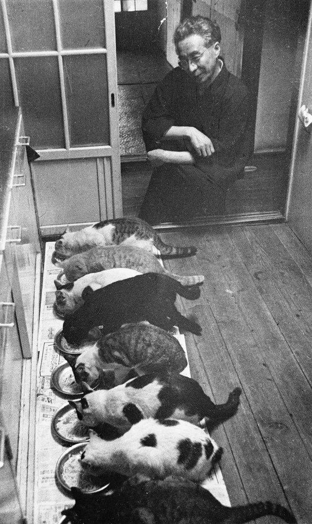 大佛次郎と猫達