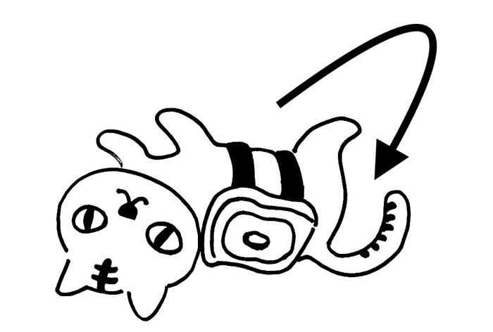 バター猫のパラドックス説明イラスト2