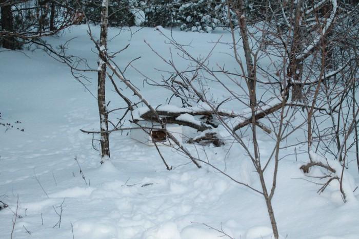 雪の中に箱