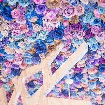 紫のお花の天井