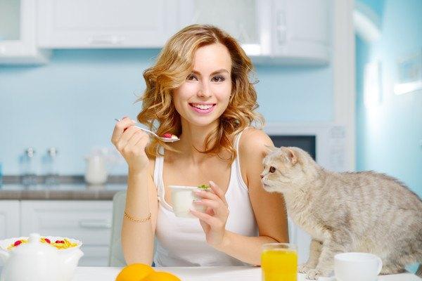 ヨーグルトを食べる飼い主と猫