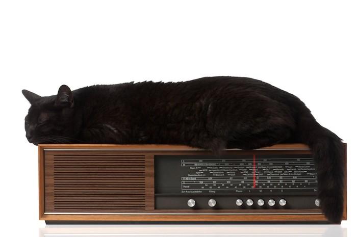 ラジオの上でくつろぐ黒猫