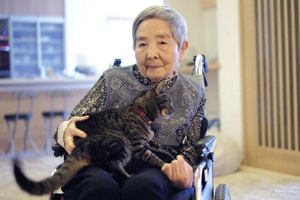 猫を抱っこするおばあさん