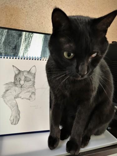 猫の似顔絵と猫