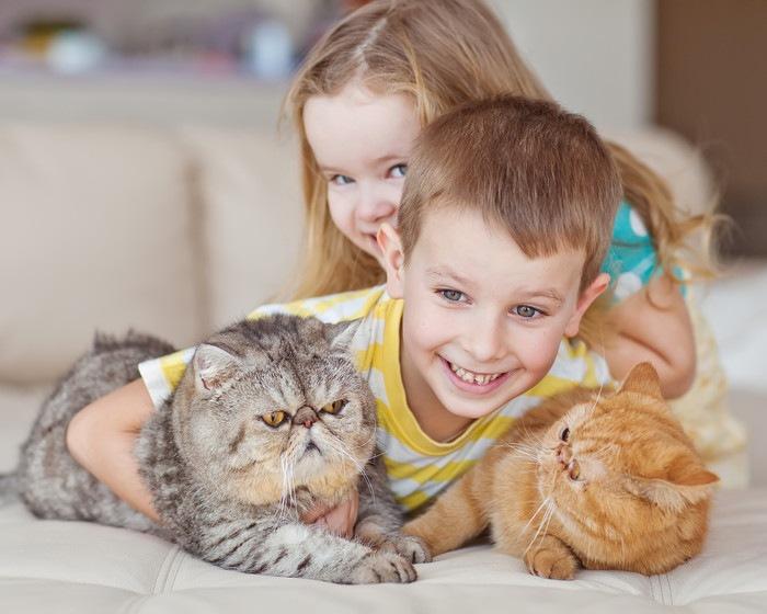 猫2匹と子ども2人