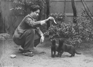 大佛次郎と黒猫二匹