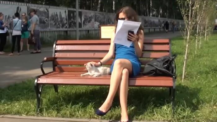 ベンチに座る女性と猫