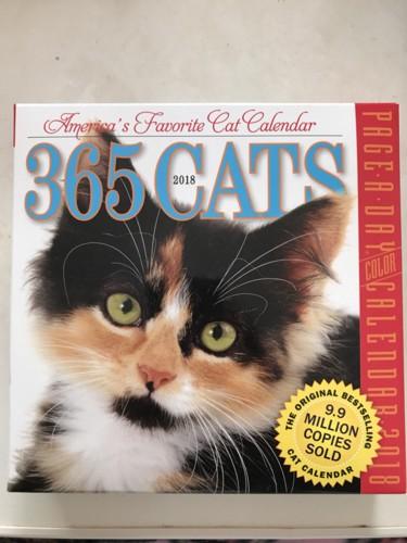実際の猫のカレンダー表紙