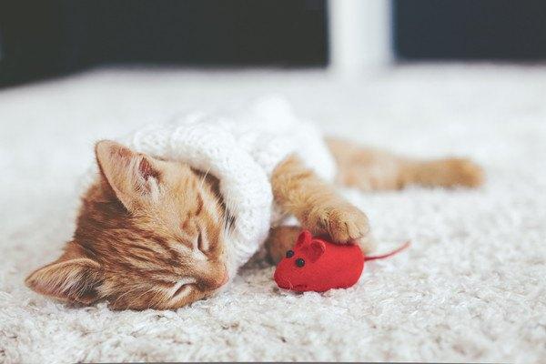 ネズミのおもちゃと眠る子猫