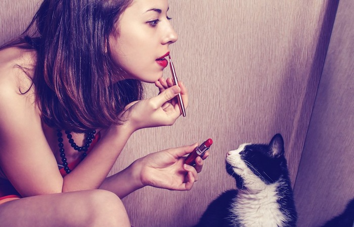 メイクする女性を見つめる猫