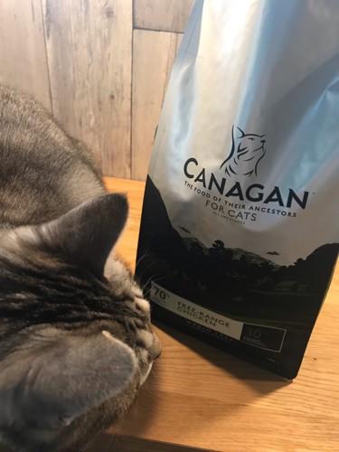 カナガン キャットフードと猫
