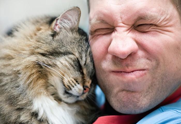 男性の顔にスリスリする猫
