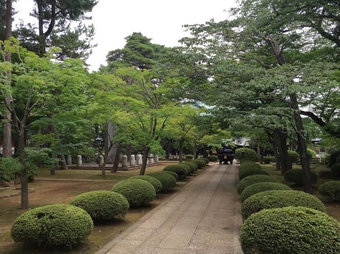 豪徳寺の庭