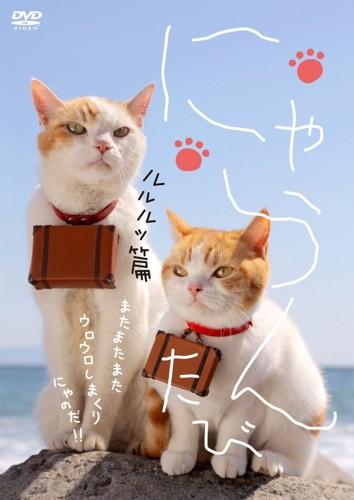 にゃらんの猫2匹