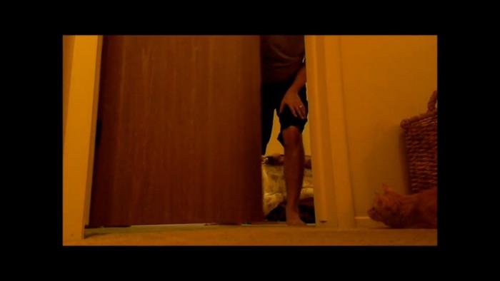 ドアを閉める飼い主