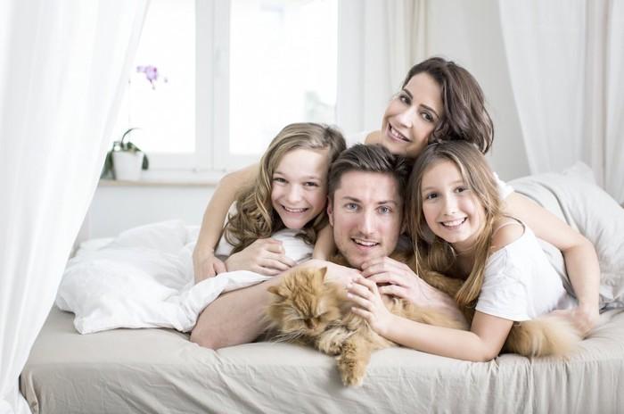 ベッドの上で猫を可愛がる家族