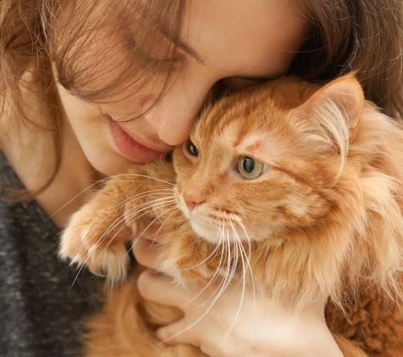 末期のリンパ腫を患うチャトラの猫を抱きしめる女性
