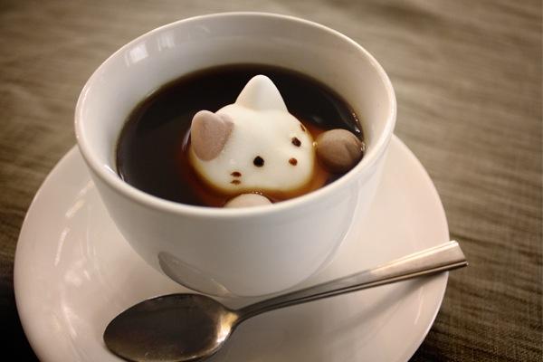 CafeCat