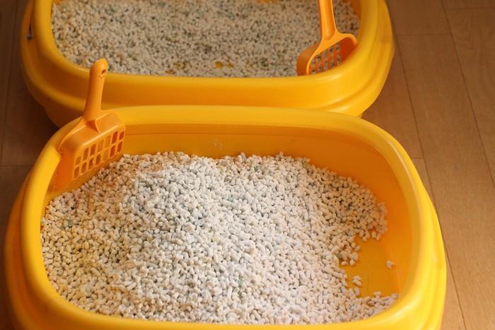 紙砂が入った猫トイレ