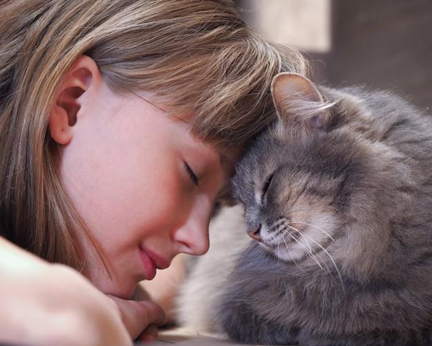 額を合わせて目を閉じる女性と猫