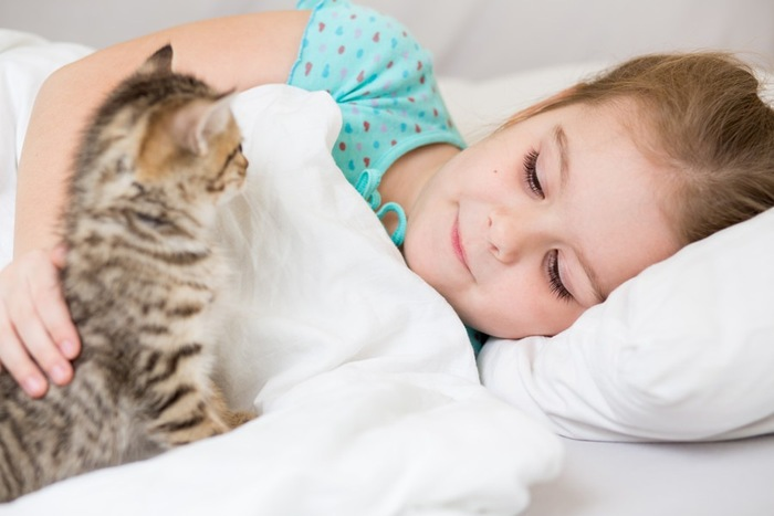 女の子を起こす子猫