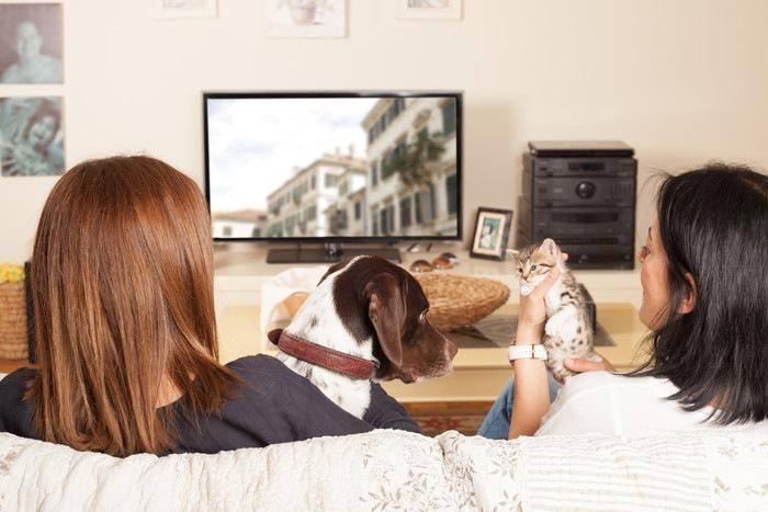 犬や猫とテレビを見る二人