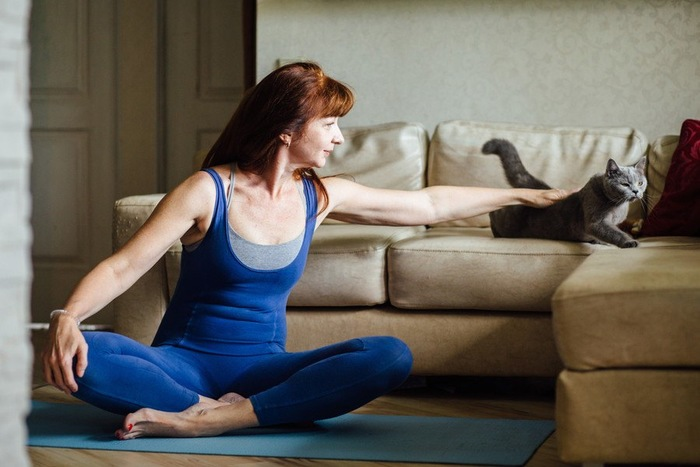 ヨガをする女性とソファの上の猫
