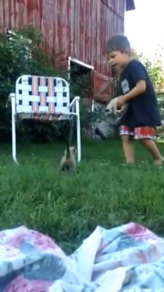 猫を抱える男の子