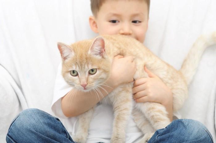嫌がる猫を抱っこする子供